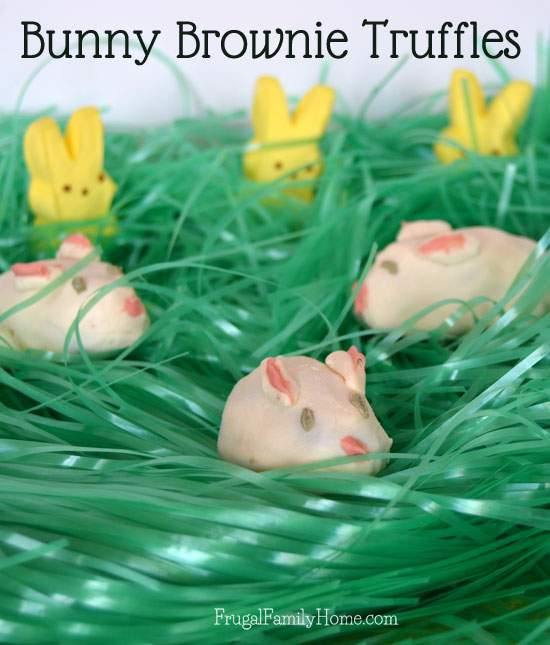 Cute Brownie Bunny Truffles for Easter