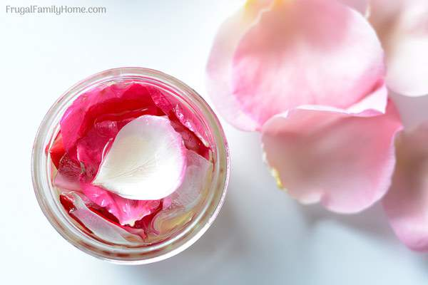 how to make rosewater from rose oil