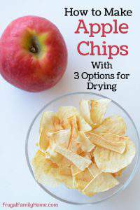 How to Make Apple Chips, with Three Drying Options